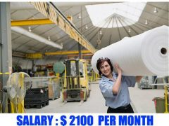Paper Factory Jobs in Canada