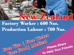 Factory Worker Jobs in New Zealand
