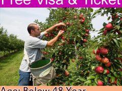 Farm Jobs in Canada Apply Now