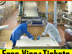 Biscuit Factory Worker Wanted in London