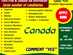 Multiple Vacancy in Canada