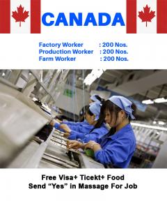 Factory Worker Jobs Canada