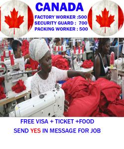 Temporary Work Visa Canada  Urgent 2021 
