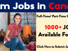 Farm Jobs in Canada For Foreigners | Urgent Required 2021