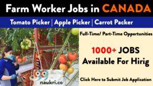 farm worker jobs