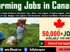 Farming Jobs in Canada