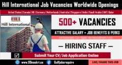 Hill International Careers
