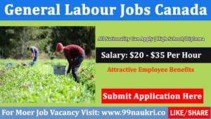 General Labour Jobs Toronto